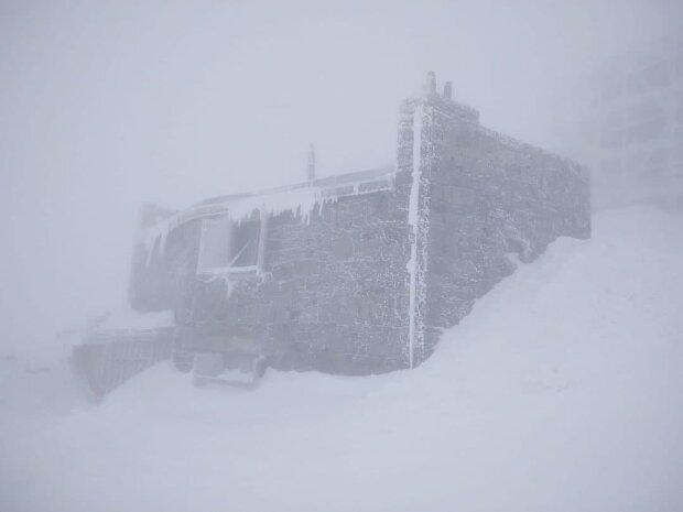 Снігопад в Україні 16 квітня, фото: Telegram