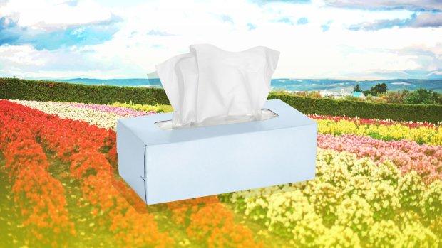Весна прийшла, а разом з нею - алергія: все, що потрібно знати про сінну гарячку