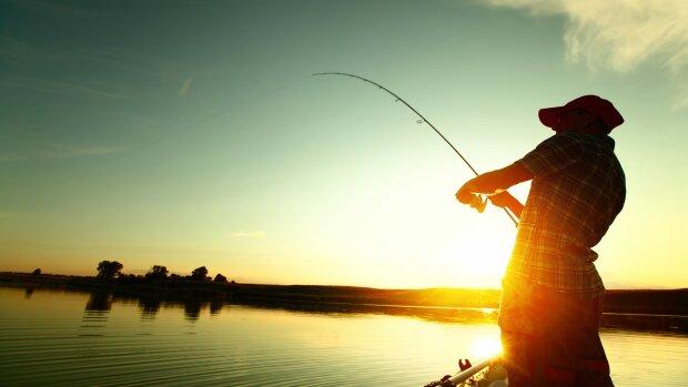 """Бешеный бобер-неадекват убил рыбака, жуткое видео попало в сеть: """"Кто видел эти зубы, все поймет"""""""