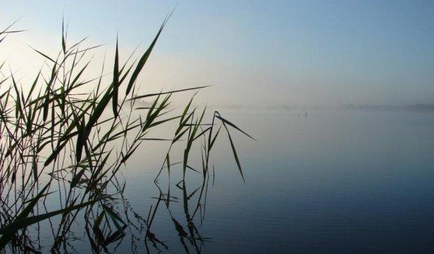 Воспетое Лесей Украинкой озеро пересохло