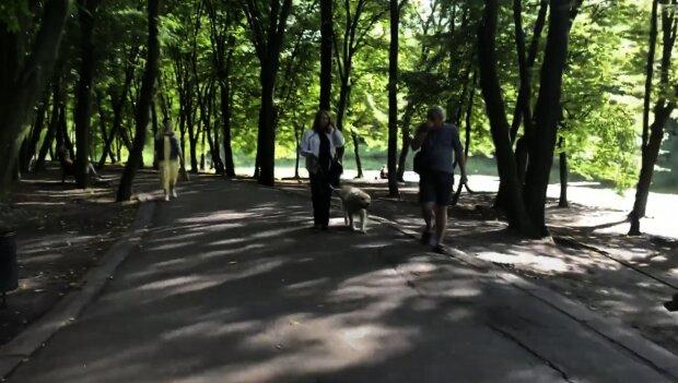 Голосіївський парк, скріншот