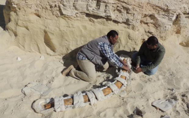 """Знахідка археологів змусила вчених переглянути поняття """"людина"""""""