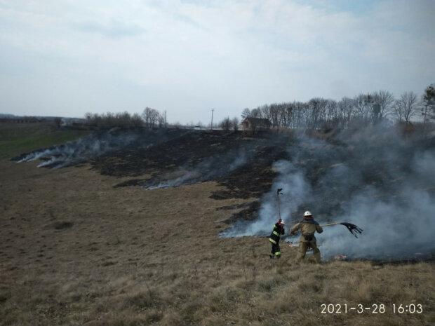 Киевщина в огне: селяне со спичками превратили сотни гектаров в пепел