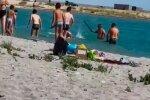 Ради удачного селфи - туристы забили палками тюленя, чтобы с ним сфотографироваться