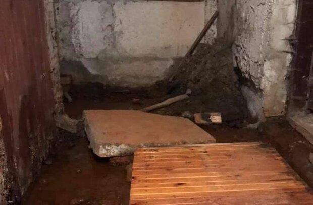 Подвал дома во Львове, фото: социальные сети