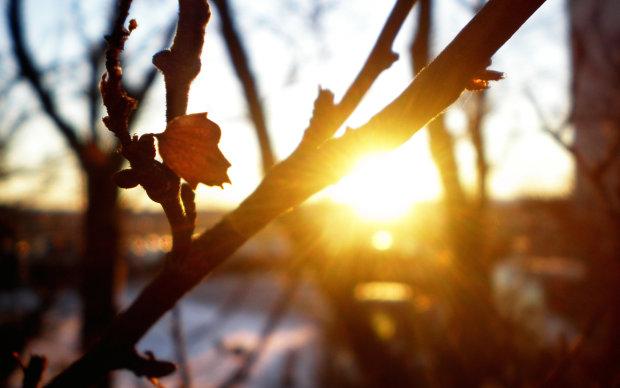 Когда настоящая весна ворвется в Украину: синоптики назвали дату