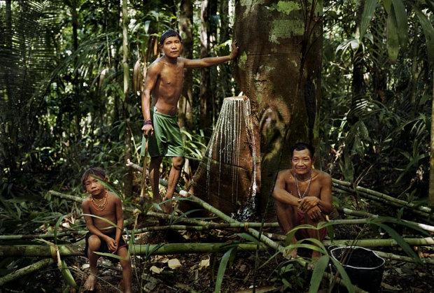 Плем'я, яке ніколи не спить: шокуючі традиції індійців Піраха