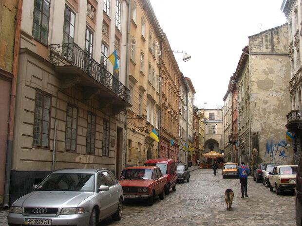 Без посвідчення, зате з перегаром: вулицями Львова гасає п'яний водій, будьте обережні