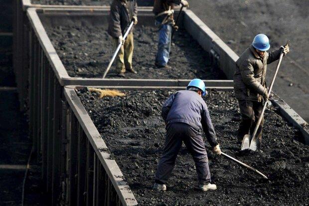 """""""Роттердам+"""" не подразумевает доставку угля из Роттердама, - Риккетс"""