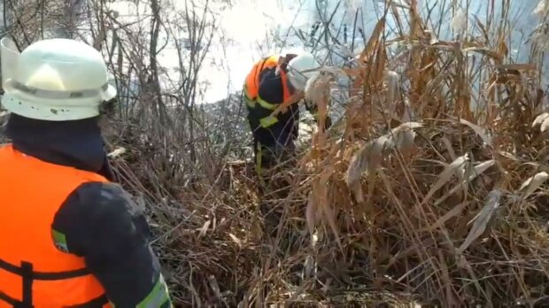 """На Киевщине нелюди выбросили в реку """"живой"""" мешок, спасатели бросились на помощь"""