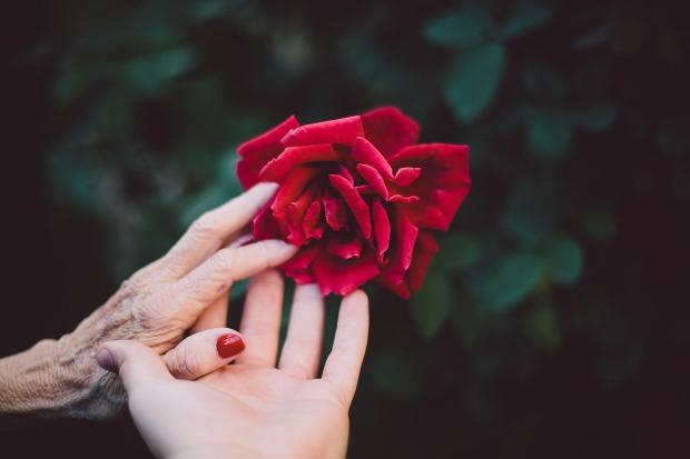 День матері 2019: найкрасивіші привітання в прозі зі святом