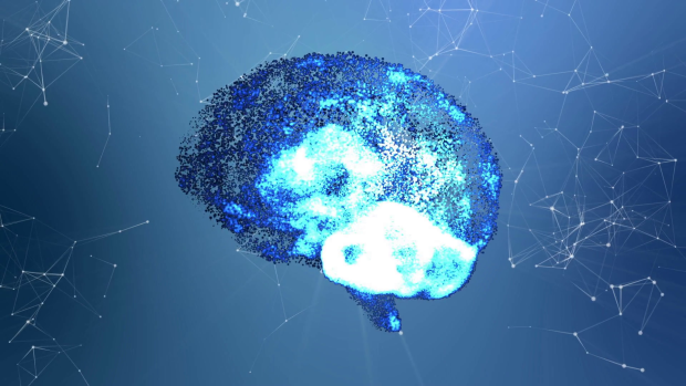 Смерть нейронам: навіщо мозок вбиває власні клітини