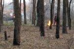 костер в лесу, скриншот из видео