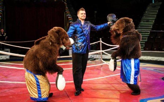 Медведь отомстил циркачам за жестокое обращение: видео
