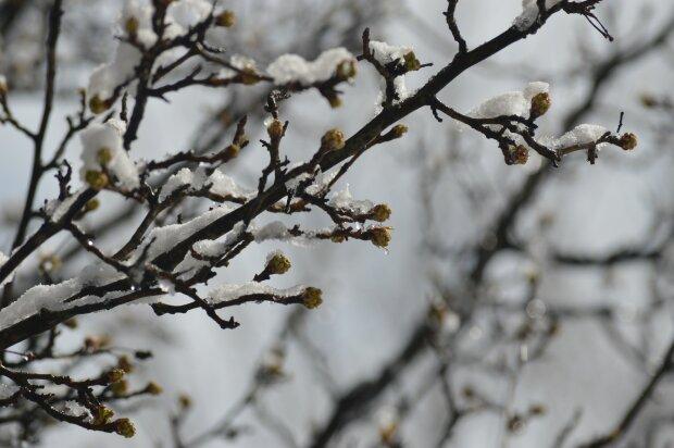 Погода в Україні, фото: pxhere