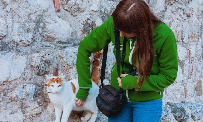 Львівські шкуродери перетворили підвал на котячий цвинтар: катують і залишають вмирати, - волосся дибки