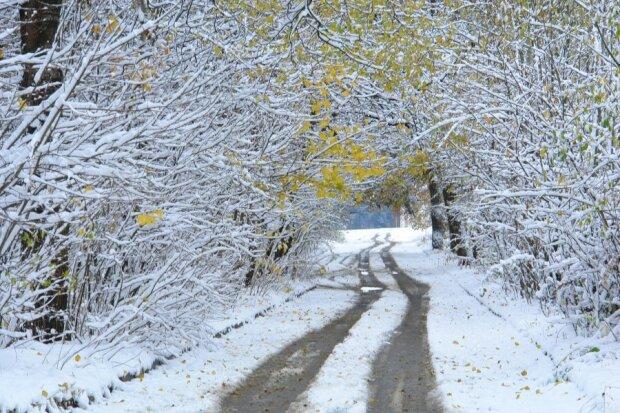 Запорожці випросили у зими трохи снігу: чим здивує погода 5 січня
