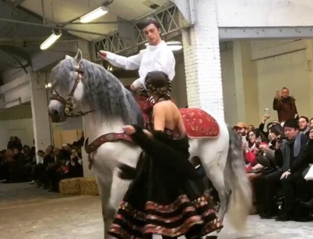 Лошадь на модном показе