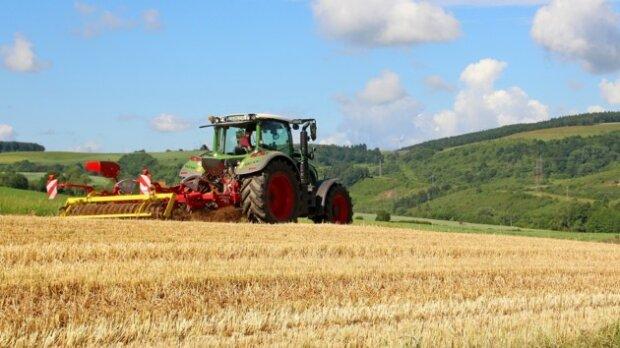 """Українцям видадуть компенсацію за землю: для кого """"розщедриться"""" держава"""
