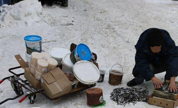Киянам впарюють тюльку зі смаком підошов: обкачав у землі - і на продаж