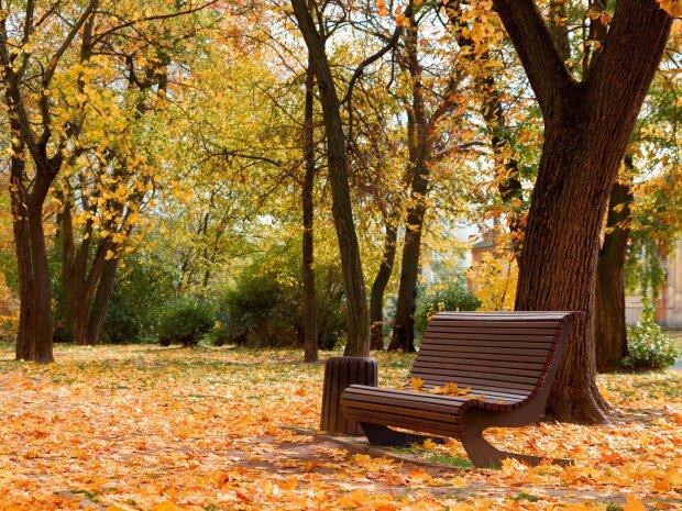 Погода на 6 листопада: стало відомо, коли похолоднішає