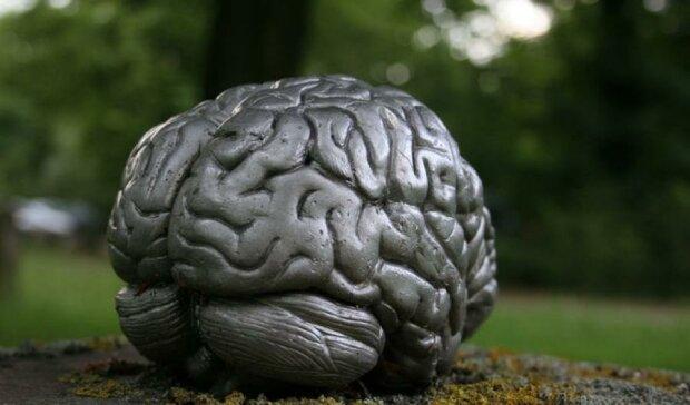 Зайва вага вбиває мозок людини