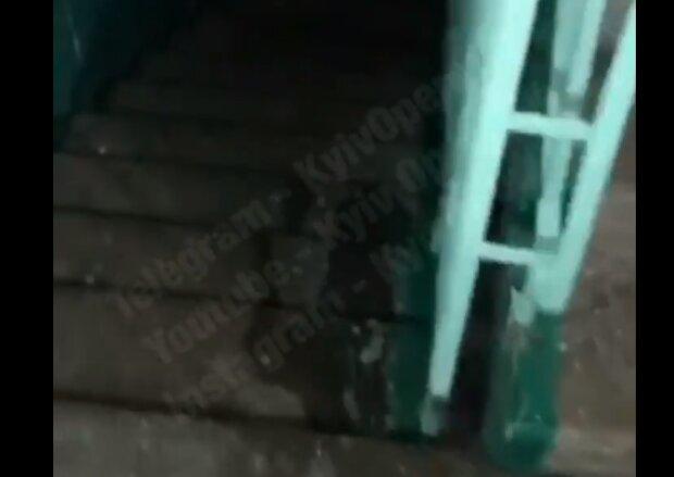 Скрин, видео YouTube