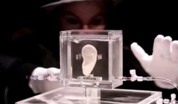 """Вчені """"оживили"""" Ван Гога"""