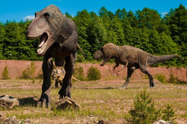 Динозаври, фото з відкритих джерел