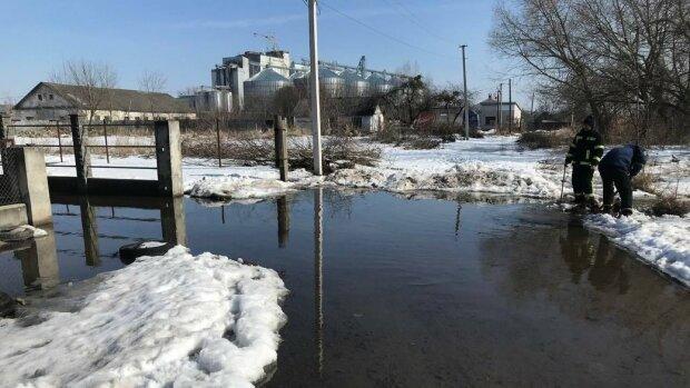 Потоп на Львовщине, фото: Суспильне