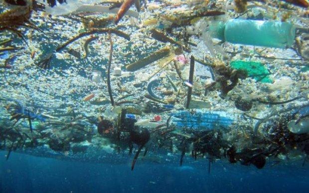 Вчені вирішили органічну проблему утилізації пластику