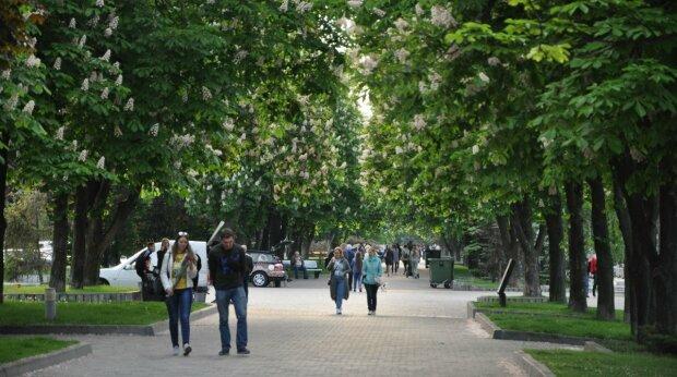 Осінь влаштує холодний прийом харків'янам: що розповіли синоптики про погоду 28 вересня