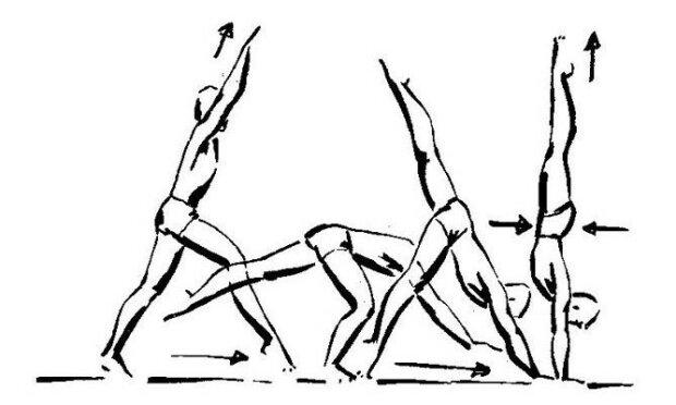 Гимнастика стойка на руках