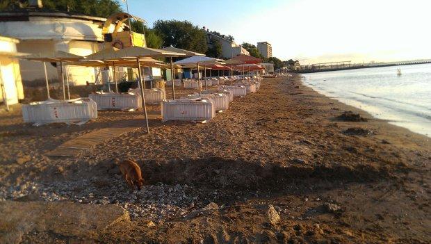 Українцям показали, що коїться в Криму в розпал відпусток: мертва тиша і порожні пляжі