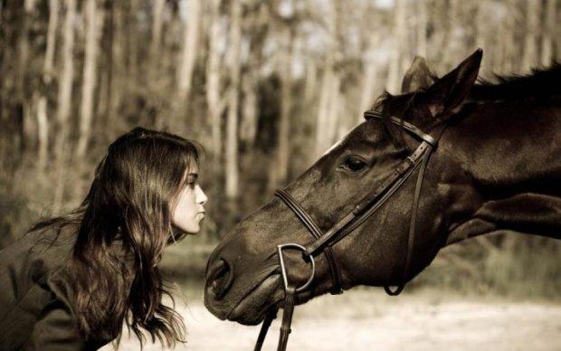 Ученые доказали, что лошади помнят эмоции людей