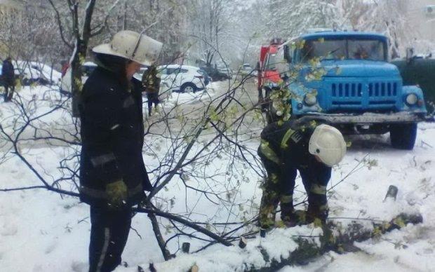 Непогода оставила тысячи украинцев без света