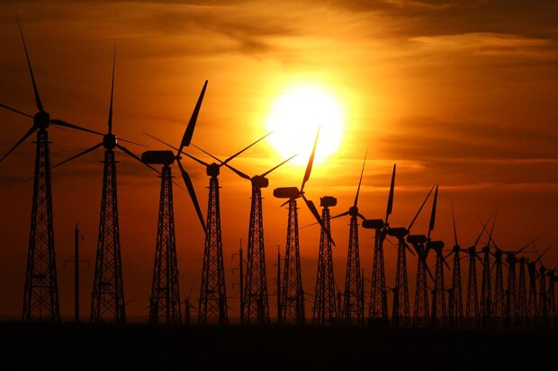 Невыполнением обещаний по решению кризиса в зеленой энергетике Кабмин отпугнул инвесторов – бизнес представитель США