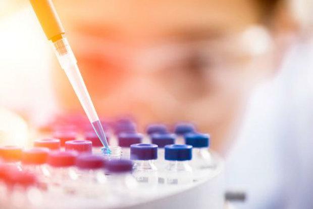 Лейкемия побеждена: предложен инновационный метод лечения смертельного заболевания