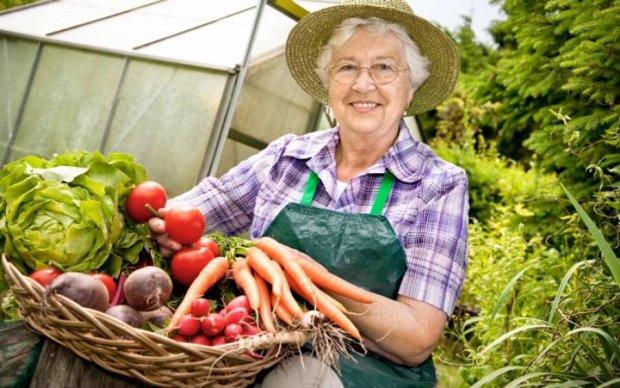 Эксперты сказали, когда украинцам ждать дешевых овощей