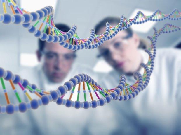 Исследователи открыли шокирующую правду об уровне мутации современного человека