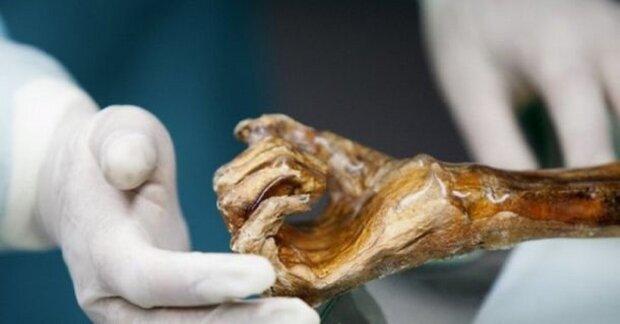 Пенсіонерка перетворилася на мумію, фото: allok.site