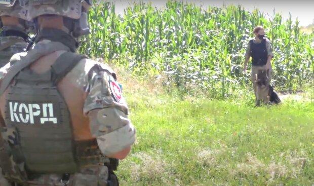 правоохоронні органи, скріншот з відео