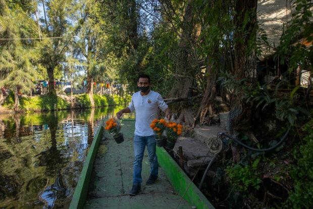 Секреты ухода за растениями: как избавиться от плесени в грунте