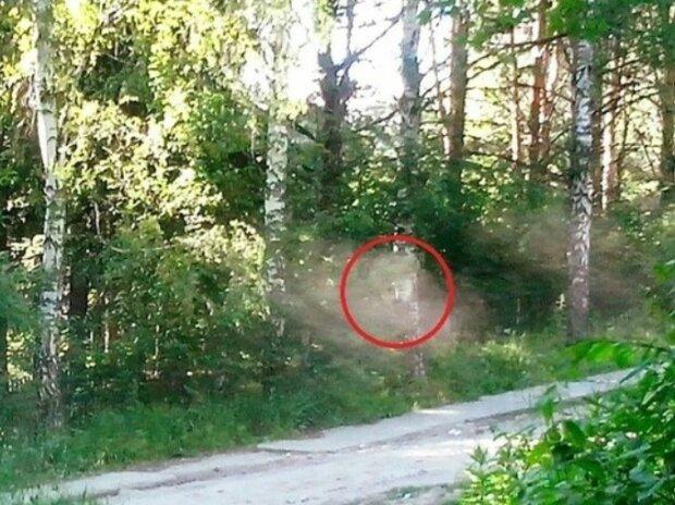 Привид, фото: Соцмережі