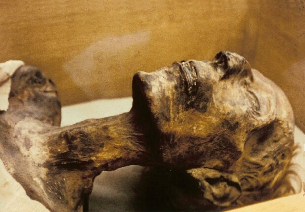 """Тутанхамону впервые сделали тест ДНК, мумия раскрыла вековечную загадку: """"наследил"""" по всей Европе"""