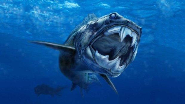 Неизвестный монстр отгрыз голову гигантской акуле: местные жители в шоке, ученые пытаются объяснить