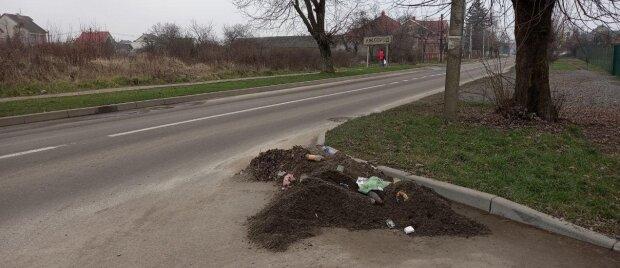 """В Ужгороде коммунальщики провели мастер-класс по свинству: """"Бросили под ноги и нормально"""""""