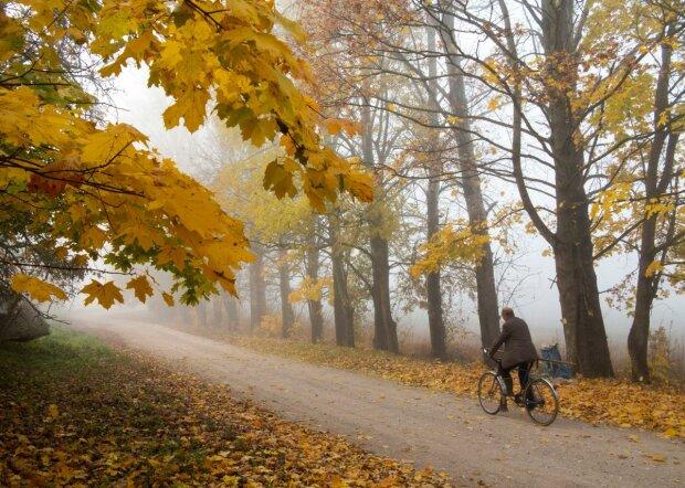Осінь побалує львів'ян райським теплом: синоптики порадували прогнозом на 21 жовтня