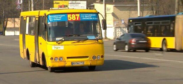 Маршрутка, фото: скриншот из видео