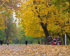 Дніпро, парк, ілюстративне фото